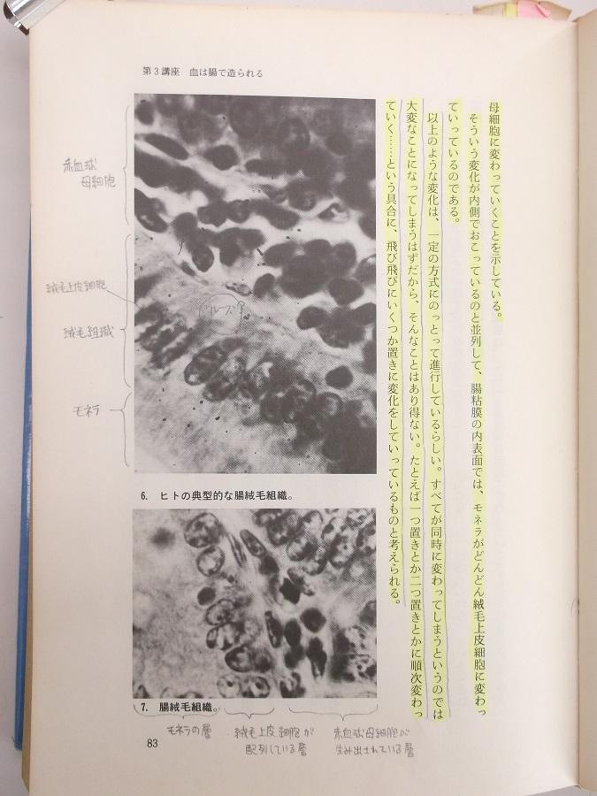 自然医学の基礎 p83