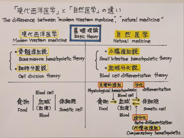 自然医学の基礎理論