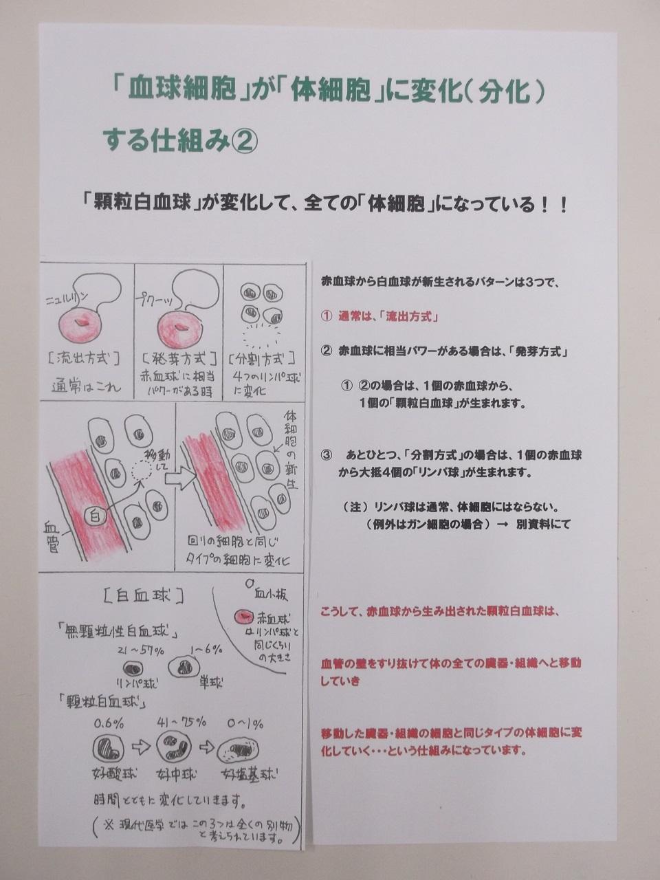 「血球細胞」が「体細胞」に変化する仕組み②