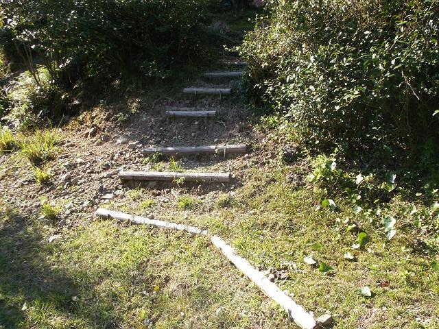 山田のユズ畑の階段