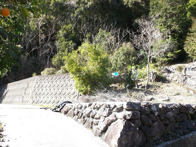 お茶畑への登り口