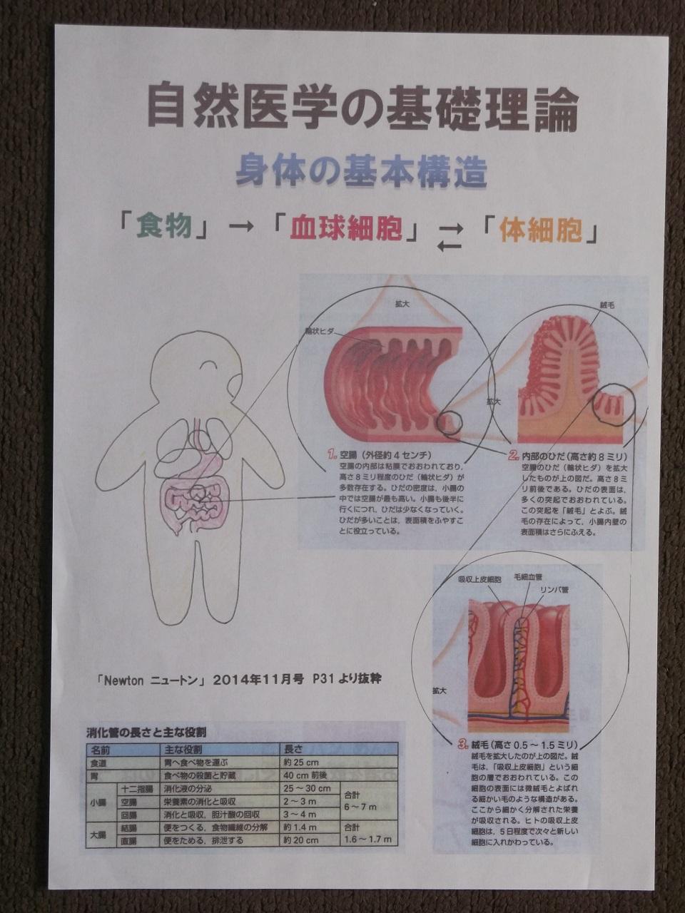 自然医学の基礎理論1